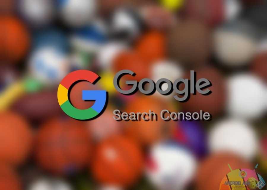 sports google search